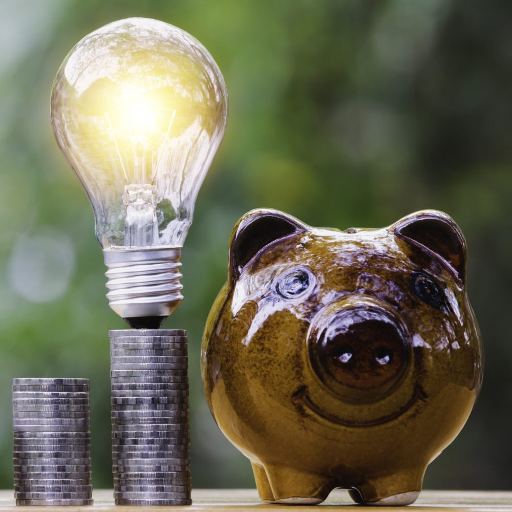 Coins and light bulb with piggy bank put on the wooden for saving money,energy concept in nature background.